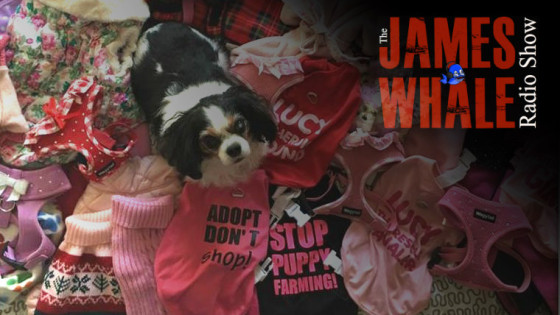 james-whale-puppy-farms